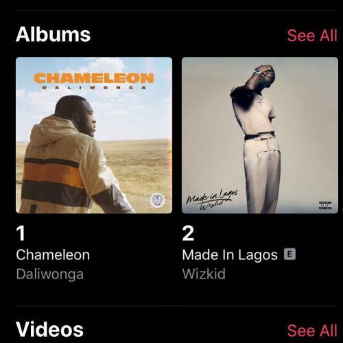 Daliwonga Chameleon Album comes #1 On iTunes