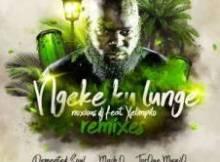 Noxious DJ ft Xelimpilo - Ngeke Ku Lunge (Demented Soul Imp5 Afro Mix)