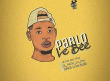 Pablo Le Bee - 501 Personality (Christian BassMachine)