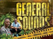 EP: Tribesoul & Bido Vega - General Sounds