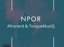 AfroNerd ft TorQue MuziQ - Npor