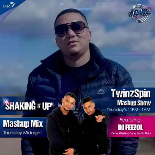 DJ FeezoL - TwinzSpin Mashup Show Mix