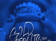 Fousheé ft Lil Wayne - gold fronts