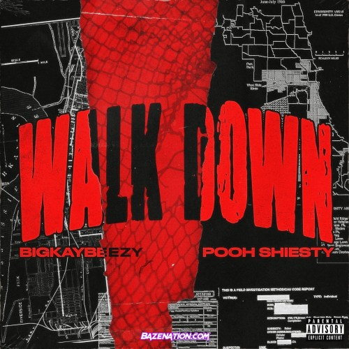 BigKayBeezy ft Pooh Shiesty - Walk Down