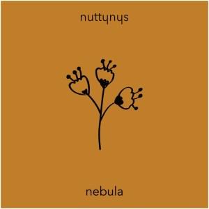 Nutty Nys - Nebula