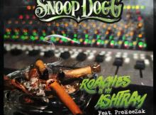 Snoop Dogg ft ProHoeZak - Roaches In My Ashtray