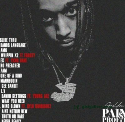 ALBUM: GeeYou - Pain & Profit