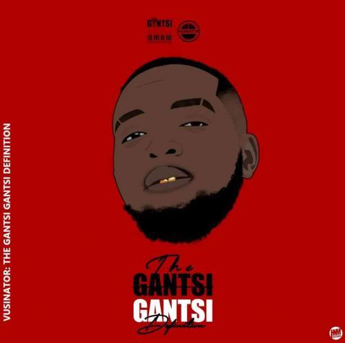 Album: Vusinator - The GantsiGantsi Definition