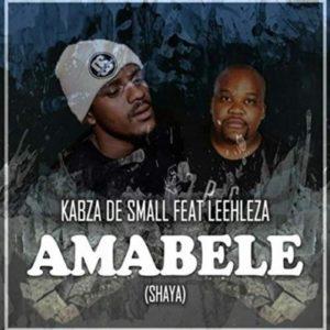 Kabza De Small - Amabele Amakhulu