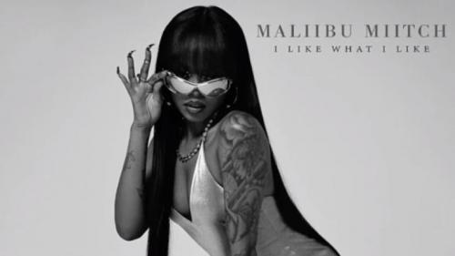 Maliibu Miitch - I Like What I Like