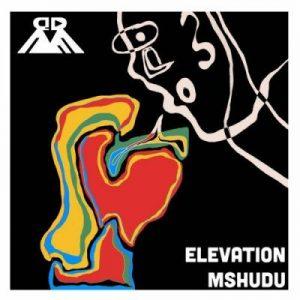 EP: Mshudu - Elevation