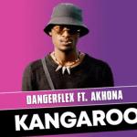 DangerFlex ft Akhona - Kangaroo