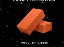 Luna Florentino - Bricks
