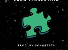 Luna Florentino - Piece It Together