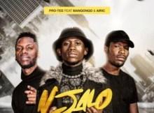 Pro Tee ft Manqonqo & Airic - Njalo