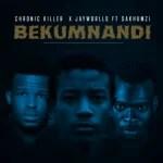 Chronic Killer ft Jayworlld & Sakhumz - Bekumnandi