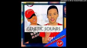 Genetic Sounds - Aim High