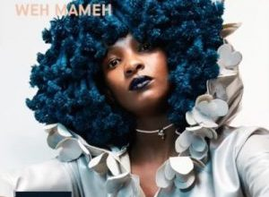 Photo of Moonchild Sanelly – Weh Mameh