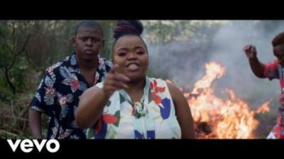 (Video) Distruction Boyz ft DJ Tira, Dladla Mshunqisi & Feerless Boyz - Ubumnandi