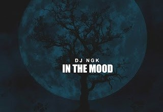 Photo of DJ NGK – Am In The Mood (AfroDrum Mix)