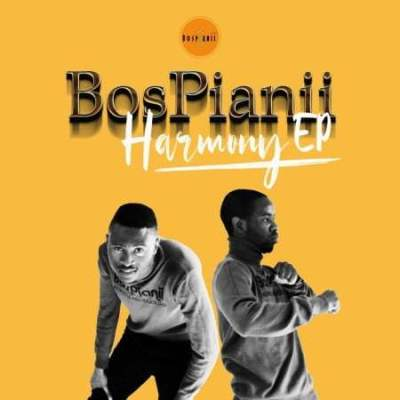 BosPianii ft Timotone - HARMONY