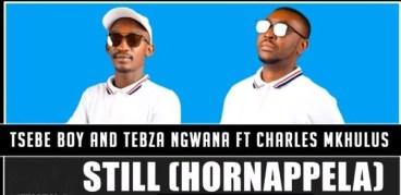 Tsebe Boy & Tebza Ngwana ft Charles Mkhulu - Still (Hornappela)