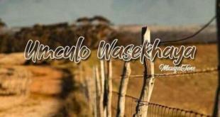 Download EP: Muziqal Tone - Umculo Wasekhaya