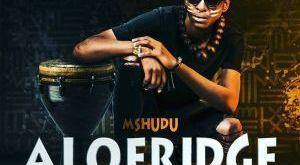 Mshudu ft Makhalafilm - Aloeridge