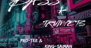 Pro Tee & King Saiman - Heal My Heart