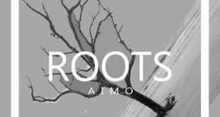 Aimo - Roots (Original Mix)