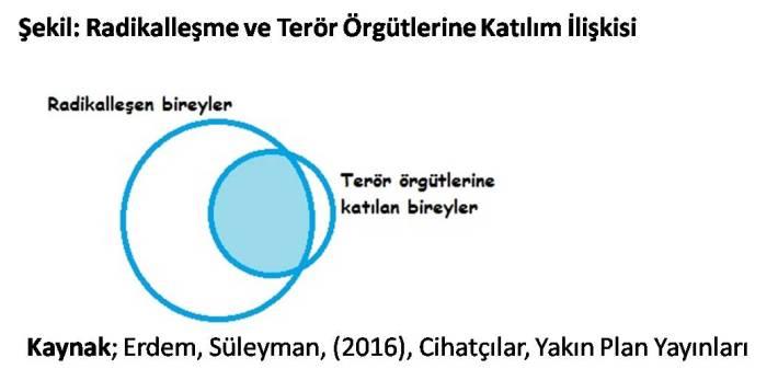 radikallesme-ve-teror-orgutlerine-katilim-iliskisi