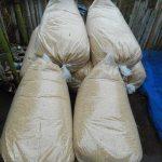 肥料の基礎:籾殻
