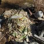 グリーン堆肥づくり:No.1堆肥の仕込み(3)