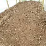 トウモロコシ(2):畝づくり