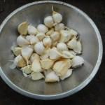 ニンニク:種片の植付け