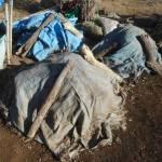 グリーン堆肥づくり:No.11堆肥の仕込み(2)
