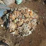 グリーン堆肥づくり:No.1堆肥の仕込み(1)