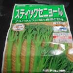 スティックブロッコリー:踏込み温床に播種