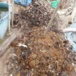 グリーン堆肥づくり:No.10堆肥と11堆肥の切り替えし