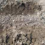 大玉スイカ:土づくり(鞍の深溝に堆肥投入)