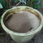 肥料づくり:液体肥料(22)