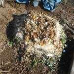 グリーン堆肥づくり:No.12G堆肥の仕込み(1)