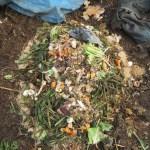 グリーン堆肥づくり:No.15G堆肥の仕込み(1)