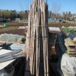 農業資材:真竹支柱の整理・整頓