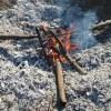 肥料づくり:草木灰づくり(1)