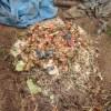 グリーン堆肥づくり:No.8G堆肥の仕込み(2)