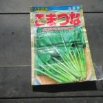小松菜(1):播種