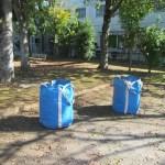 落葉堆肥づくり:落葉かき(4回目)