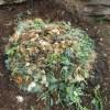 グリーン堆肥づくり:No.6G堆肥の仕込み(1)