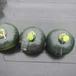 カボチャ:収穫を始める